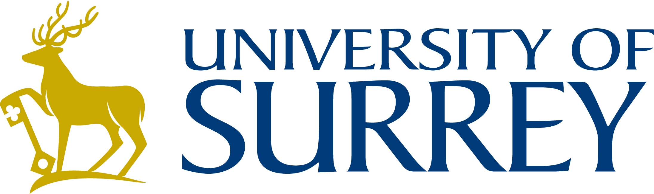 logo University of Surrey